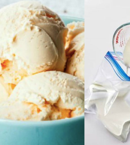 Homemade Ice Cream In A Bag – Without The Mess